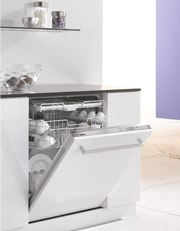 miele dishwasher paneled