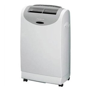 friedrich portable air conditioner P12B