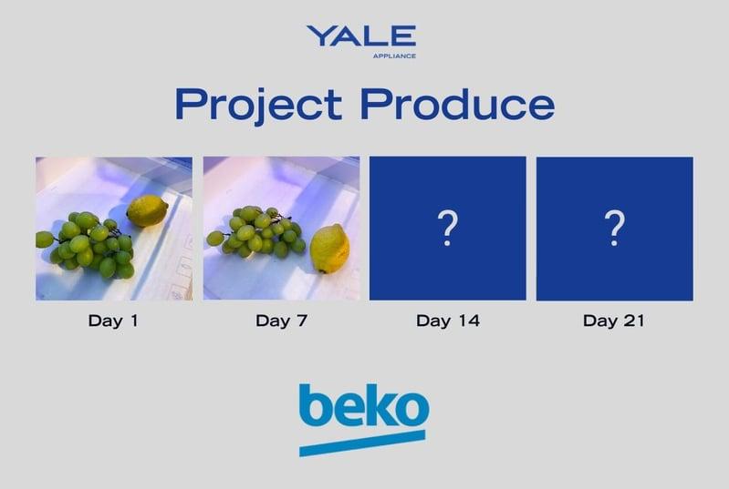 Beko Fruit 2