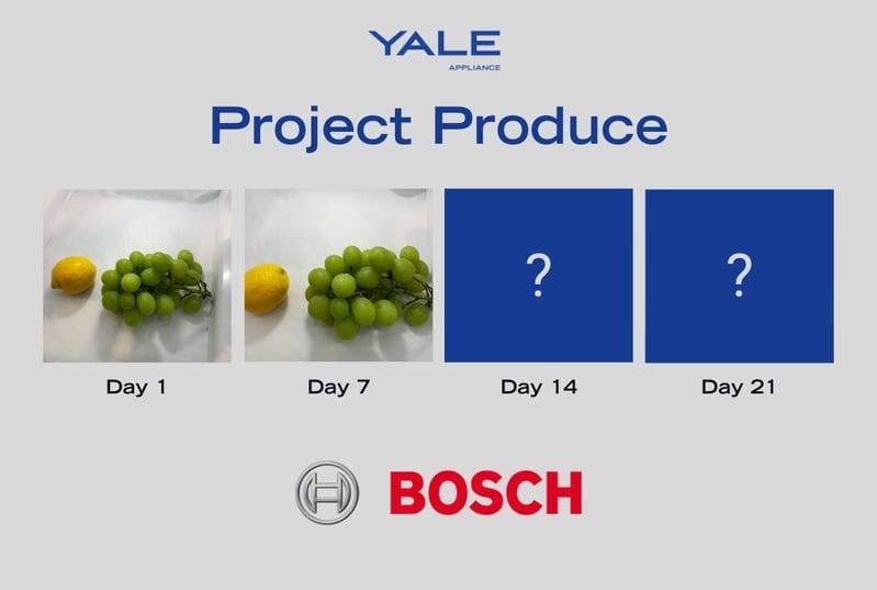 Bosch Fruit