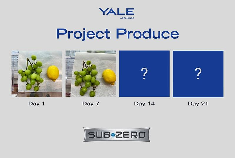 Project Produce Sub-Zero - Fruits