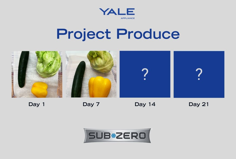 Project Produce Sub-Zero - Vegetables