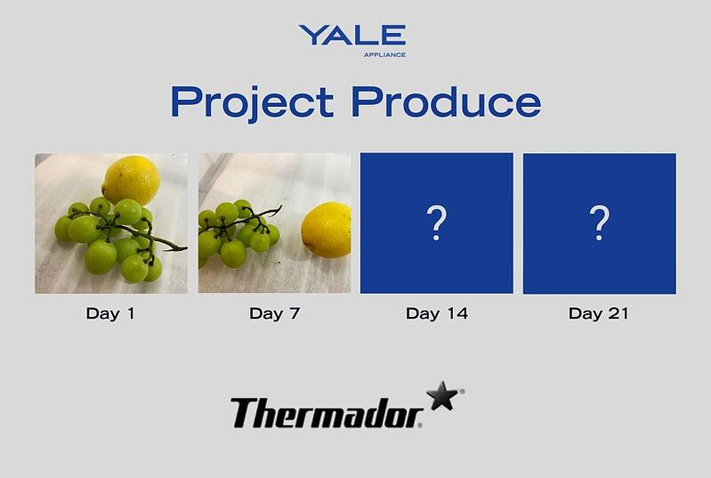 Project Produce Thermador - Fruits