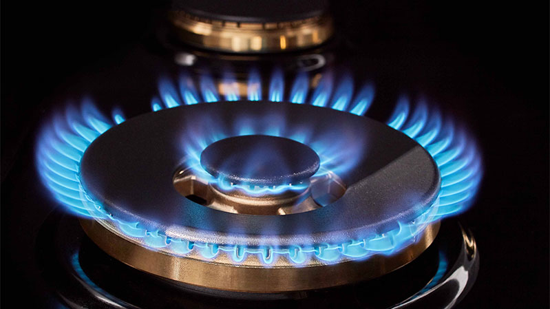 sks-pro-range-gas-burner